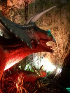 Jurassic exhibit at the Mystic Aquarium